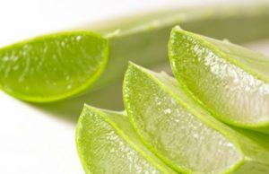 Preparación y consumo del Aloe vera
